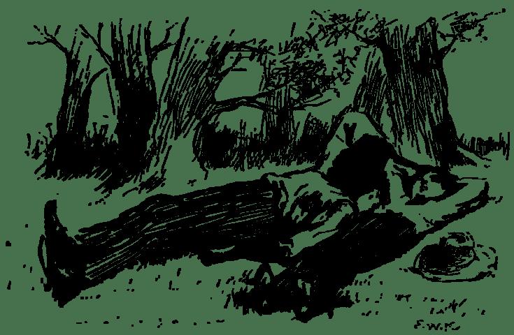 Adventures_of_Huckleberry_Finn_1885-p108 (1)